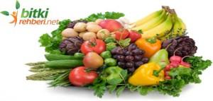 vücudu yenileyen besin