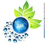 Alkali pH Damlası
